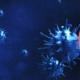 cellule della malattia x e titolo dell'articolo sui ladri di virus